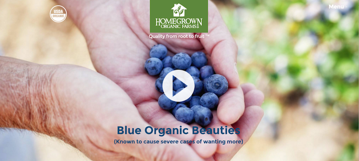 Blue organic beauties